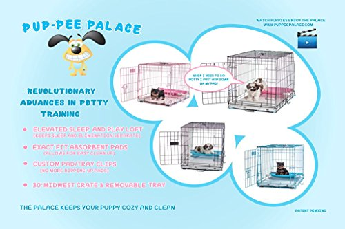24-Pup-Pee-Palace-Training-Cage-BLUE-Elevated-Loft-Tray-Pads-Pad-Clips-0-0
