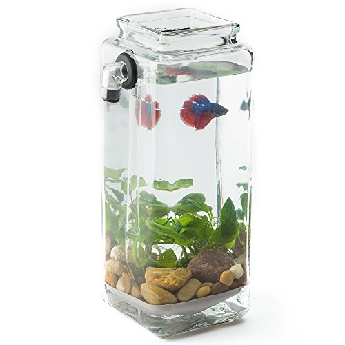 Newest version noclean aquariums gravityflow self for Self cleaning betta fish tank