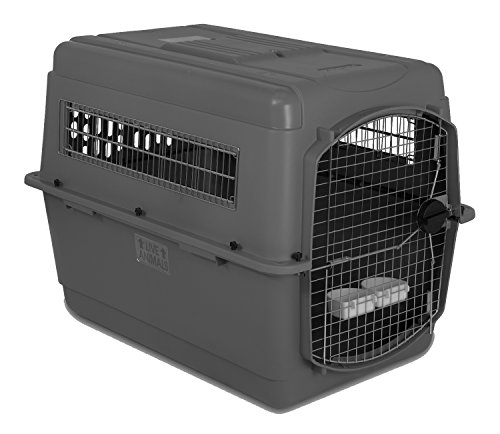 Petmate-Sky-Kennel-for-Pets-from-70-to-90-Pound-Light-Gray-0