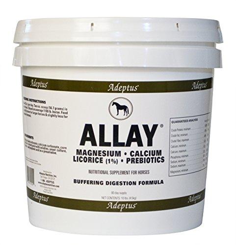 Adeptus-Allay-0