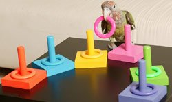 Birdie-Ring-Toss-3-Color-Medium-Ring-on-Peg-Trick-0-1
