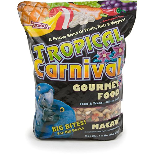 Browns-Tropical-Carnival-Gourmet-Macaw-Food-0