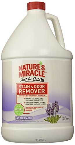 Natures-Miracle-Just-for-Cats-Stain-and-Odor-Remover-Lavender-0
