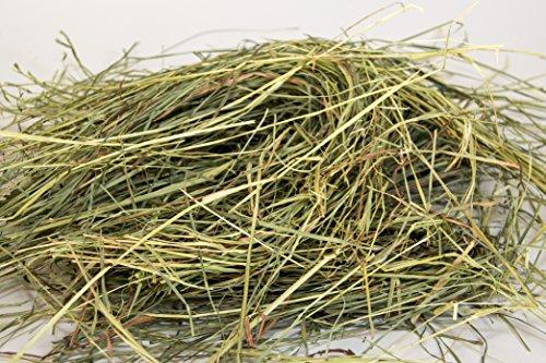 Rabbit-Hole-Hay-Orchard-Grass-0