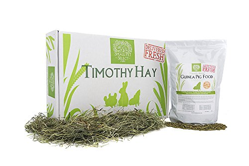 Small-Pet-Select-Combo-Pack-Timothy-Hay-10-lb-and-Guinea-Pig-Food-5-lb-0