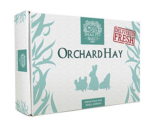 Small-Pet-Select-Orchard-Grass-Hay-Pet-Food-0