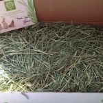 Small-Pet-Select-Timothy-Hay-Pet-Food-0-1