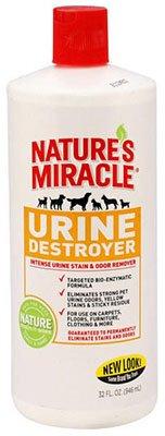 Urine-Destroyer-Formula-Stain-Residue-Eliminator-Pack-of-12-0