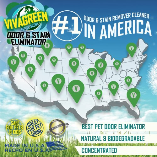 Viva-Green-Odor-and-Stain-Eliminator-VG0504-15-Best-Seller-Pet-Urine-Vanisher-Miracle-Enzyme-CleanerOdor-Neutralizer-Cat-Urine-Smell-Eliminator-0-1