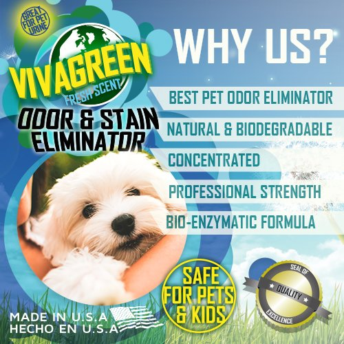 Viva-Green-Odor-and-Stain-Eliminator-VG0504-15-Best-Seller-Pet-Urine-Vanisher-Miracle-Enzyme-CleanerOdor-Neutralizer-Cat-Urine-Smell-Eliminator-0