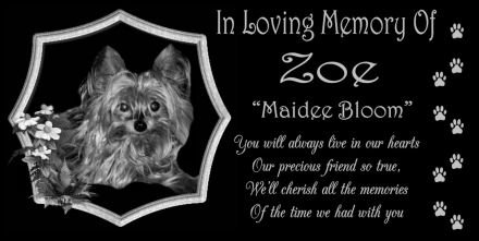 12-x-6-Lazer-Gifts-Personalized-Black-Granite-Pet-Memorial-Marker-Style-0