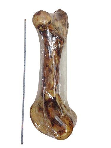 123-Treats-Premium-Grade-Roasted-Mammoth-Femur-Bone-16-Giant-Dog-Bone-Dog-Treat-Meaty-Femur-Monster-Size-from-Grass-Fed-Beef-All-Natural-Gourmet-Chew-Bone-0-0