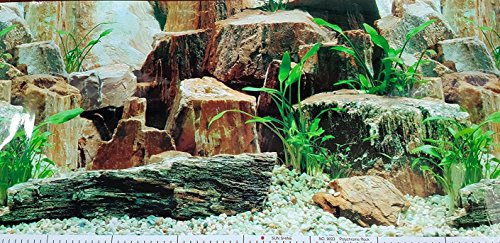 19-Inch-Height-Double-Sided-Aquarium-Background-Large-Rocks-Decorations-0-0