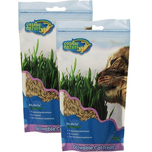 2-Pack-Pet-Zone-OurPets-Kitty-Herbs-5-Ounces-each-0