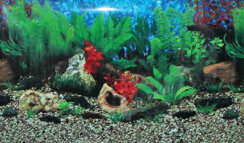 20-X-32-Fish-Tank-Background-Lakeriver-Double-Sided-0-0