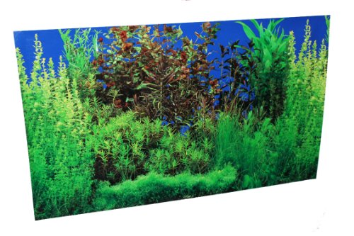 20-X-32-Fish-Tank-Background-Lakeriver-Double-Sided-0-1