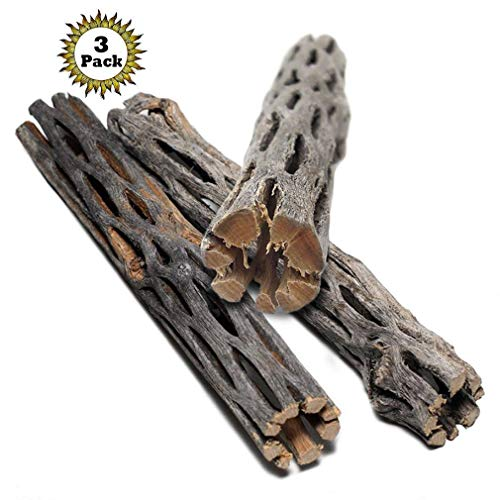 3-Cholla-Wood-for-Pets-Aquarium-Decoration-Thorn-free-dried-husk-for-climbing-or-hiding-Hollow-chew-toy-Healthy-pH-buffering-tannins-lowers-pH-Multifunctional-Air-plant-Display-and-Decor-0-0