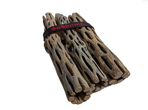 3-Pieces-5-6-inches-Long-Natural-Cholla-Wood-for-Aquarium-Decoration-by-SoShrimp-0-0