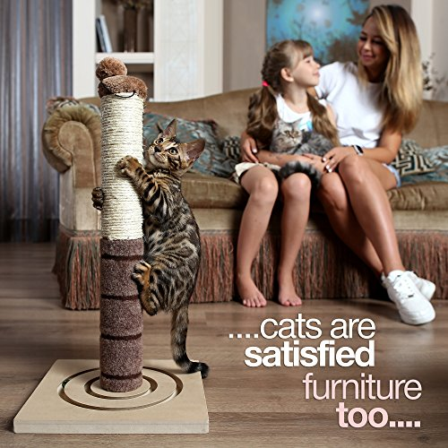 4-Paws-Stuff-Tall-Cat-Scratching-Post-Cat-Interactive-Toys-Cat-Scratch-Post-Cats-Kittens-Plush-Sisal-Scratch-Pole-Cat-Scratcher-22-inches-Beige-0-2