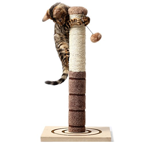 4-Paws-Stuff-Tall-Cat-Scratching-Post-Cat-Interactive-Toys-Cat-Scratch-Post-Cats-Kittens-Plush-Sisal-Scratch-Pole-Cat-Scratcher-22-inches-Beige-0