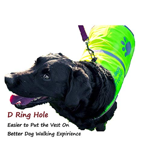 4legsfriend-Dog-Safety-Yellow-Reflective-Vest-with-Leash-Hole-5-Sizes-High-Visibility-for-Outdoor-Activity-Day-and-Night-Keep-Your-Dog-Visible-Safe-from-Cars-Hunting-Accidents-0