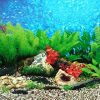 9088-20-x-48-Fish-Tank-Background-2-Sided-River-Bed-Lake-Background-Aquarium-by-New-0-0