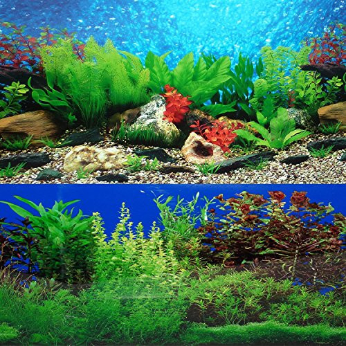 9088-20-x-48-Fish-Tank-Background-2-Sided-River-Bed-Lake-Background-Aquarium-by-New-0
