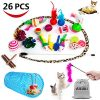AILUKI-26PCS-Cat-Toys-Kitten-Toys-Assortments-Variety-Catnip-Toy-Set-Including-2-Way-TunnelCat-Feather-TeaserCatnip-FishMiceColorful-Balls-and-Bells-for-CatPuppyKitty-0