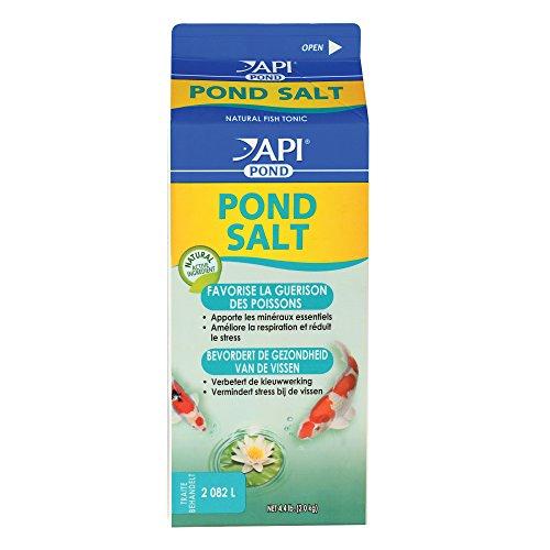 API-Pond-Salt-Pond-Water-Salt-0