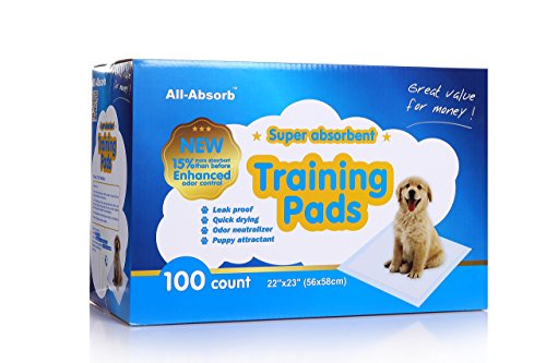 All-Absorb-Training-Pads-22-inch-by-23-inch-0
