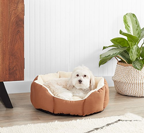 AmazonBasics-20in-Pet-Bed-For-Cats-or-Small-Dogs-0-0