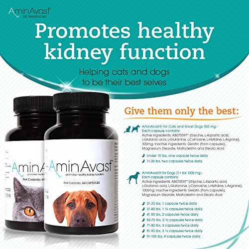 AminAvast-Kidney-Support-Supplement-for-Cats-and-Dogs-300mg-Promotes-and-Supports-Natural-Kidney-Function-Supports-Health-and-Vitality-Easily-Administered-0-0