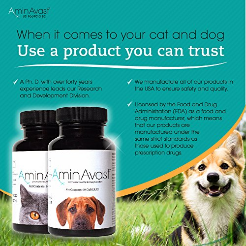 AminAvast-Kidney-Support-Supplement-for-Cats-and-Dogs-300mg-Promotes-and-Supports-Natural-Kidney-Function-Supports-Health-and-Vitality-Easily-Administered-0-2