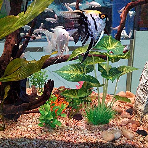 Aquarium-Plants-DecorationArtificial-Plants-for-Fish-Tank10-Inches25cm-High2-Pack-0-2