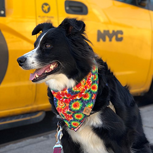 BarkBarkGoose-Colorful-Designer-Dog-Bandanas-in-Sizes-S-M-L-and-XL-Includes-1-Bandana-0-2