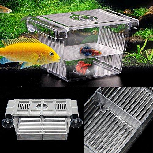 BeesClover-Aquarium-Hatchery-Trap-Fish-Breeding-Plastic-Box-Tank-Fry-Floating-Breeder-Isolation-Box-0-2