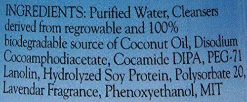 Bio-groom-Silky-Cat-Protein-and-Lanolin-Shampoo-8-Ounce-0-0