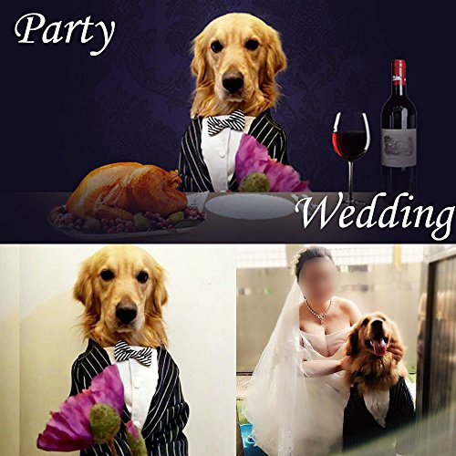 Bolbove-Medium-to-Large-Dogs-Formal-Tuxedo-Handsome-Party-Suit-Striped-Wedding-Bow-Tie-Outfit-0-0