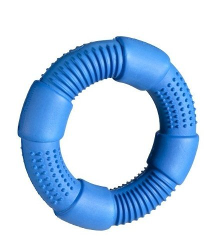 Chase-n-Chomp-Go-Ring-Pet-Chew-Toy-Assorted-Colours-0-0
