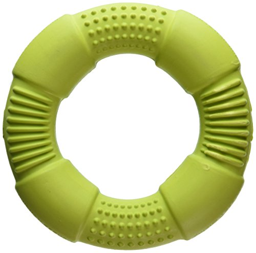 Chase-n-Chomp-Go-Ring-Pet-Chew-Toy-Assorted-Colours-0