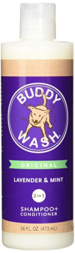Cloud-Star-Lavender-Mint-Corporation-Buddy-Wash-16-Oz-Pack-Of-1-0