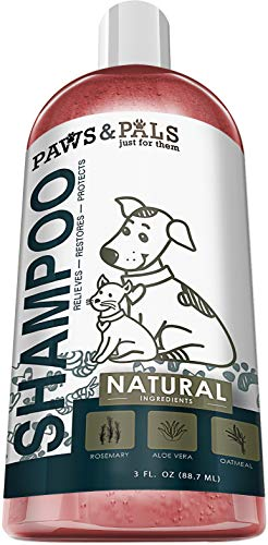 Dog-Shampoo-For-Dry-Itchy-Skin-Smelly-Dogs-Cats-Oatmeal-Shampoo-and-Conditioner-Medicated-Veterinary-Formula-Clinical-Aloe-Vera-Pet-Wash-for-Puppy-Kitten-Kitty-Cat-Dry-Itchy-Sensitive-Shedding-Skins-0