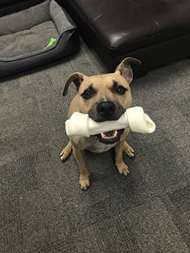 Dog-rawhide-bones-Bulk-pack-of-3-natural-rawhide-protein-treats-knot-bone-chews-Medium-0-0