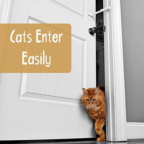 Door-Buddy-Door-Latch-Plus-Door-Stop-Keep-Dog-Out-of-Litter-Box-and-Prevent-Door-from-Closing-Easy-Cat-and-Adult-Entry-Installs-in-Seconds-Perfect-Pet-Gate-and-Cat-Door-Alternative-Grey-0-0