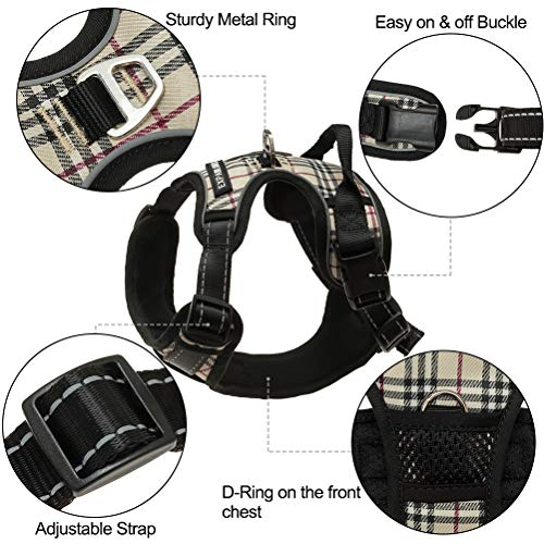 EXPAWLORER-Best-No-Pull-Dog-Harness-3M-Reflective-Outdoor-Adventure-Pet-Vest-with-Handle-8-Stylish-Colors-and-5-Sizes-0-1