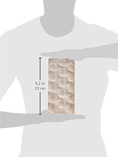 Exxodus-BAC-Brick-Sized-9-x-45-x-25-for-biofiltration-1-Brick-0-0