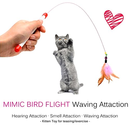 FANCER-Cat-Toy-Feather-Wand-Bundle-of-4-Pack-Interactive-Pet-Cat-Kitten-Chaser-Teaser-Wire-Wand-with-Bell-Beads-for-Cat-Exercise-Play-Fun-Gifts-Wholesale-0-0