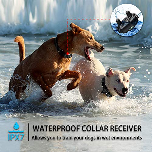 FUNSHION-Shock-Collar-for-Dogs-2600-FT-Dog-Shock-Collar-with-Remote-Beep-Vibration-Shock-Light-Modes-Dog-Training-Collar-IPX7-100-Waterproof-and-Rechargeable-Shock-Collar-0-1