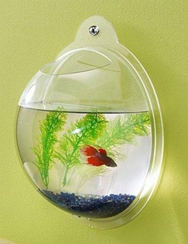 Fish-Bubbles-Wall-Mounted-Acrylic-Fish-Bowl-0
