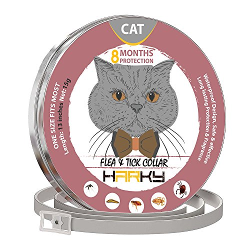 GORAUL-Flea-and-Tick-Collar-for-Cats-8-Months-Protection-Hypoallergenic-Adjustable-Waterproof-Cat-Collar-Flea-Treatment-Tick-Prevention-with-Natural-Essential-Oil-0